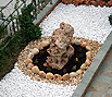 CODE 6: Flower bed decoration, withe white - politiko peeble beige and large decorative rock Aris